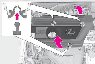 Lexus NX. Steps to take in an emergency
